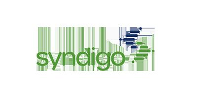 Product Content syndication - Syndigo